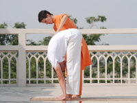 Asanas in detail